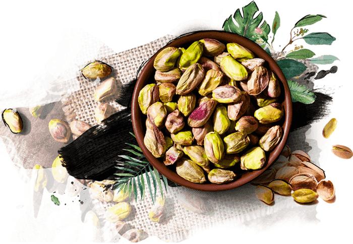 Pistachio | INC - International Nut and Dried Fruit Council