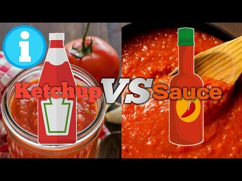 Ketchup VS Sauce - Difference between Ketchup and Sauce. - YouTube
