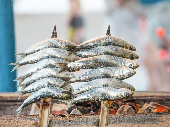 Are Sardines Good for You?