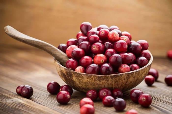 cranberry | Plant, Fruit, Description, Cultivation, Facts, & Species |  Britannica
