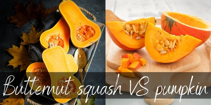 Pumpkin VS Butternut Squash - How To Pick Each - Foodiosity