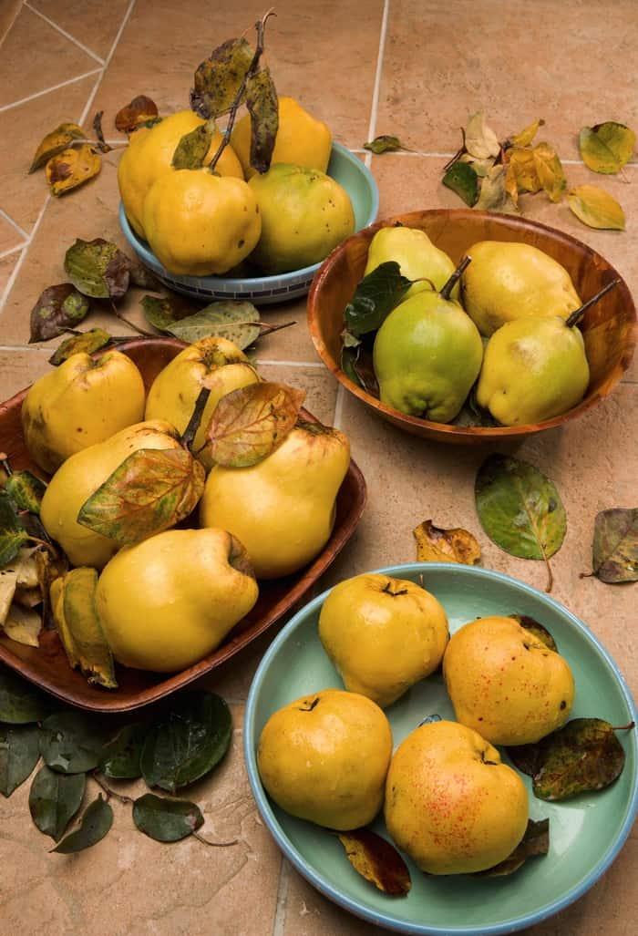Can you eat raw quince ? - ROHTOPIA - Rohkost + Ganzheitliches Wohlfühlen