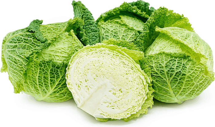 Savoy Cabbage Information, Recipes and Facts