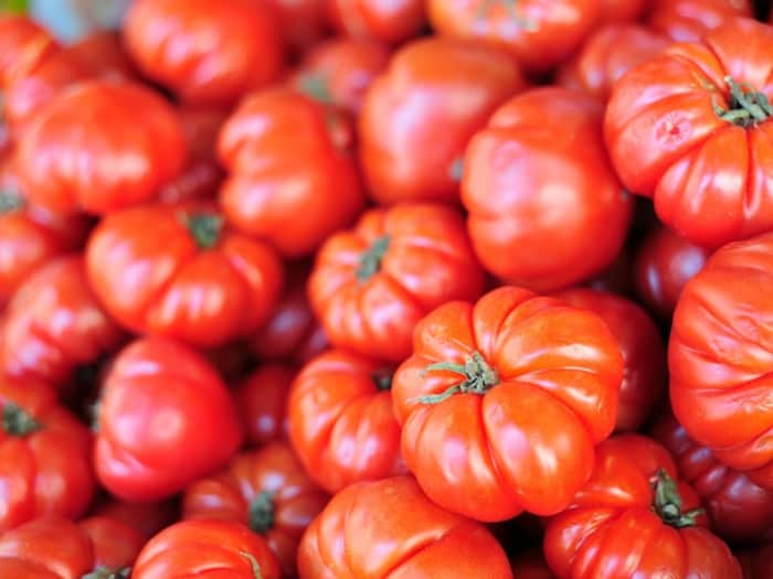 Planting Beefsteak Tomatoes: How To Grow Beefsteak Tomatoes