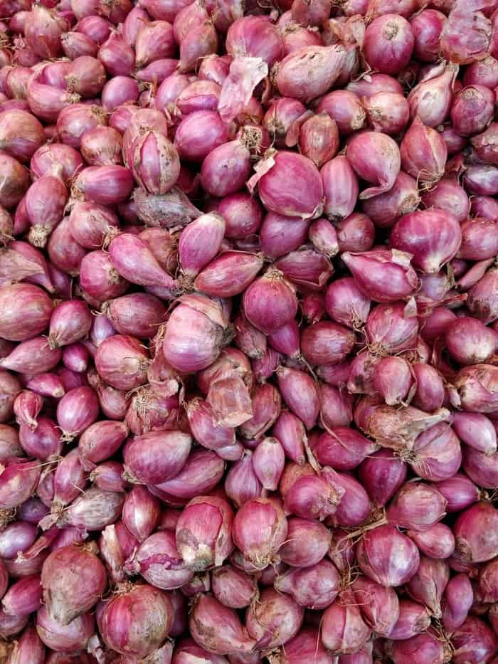 Shallots Pictures   Download Free Images on Unsplash