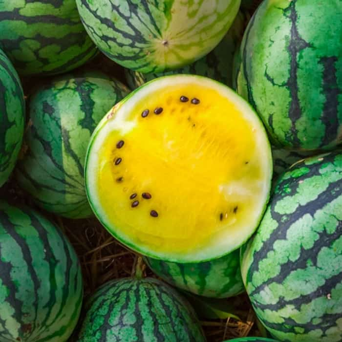 How to Grow Yellow Watermelons