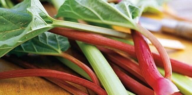 What Is Rhubarb? | Allrecipes