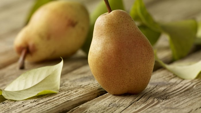Tips on How to Store Pears for Winter