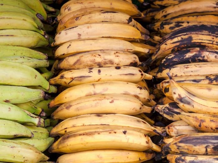 Plantains: Benefits and nutrition