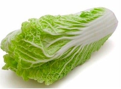 Napa Cabbage : Article - GourmetSleuth