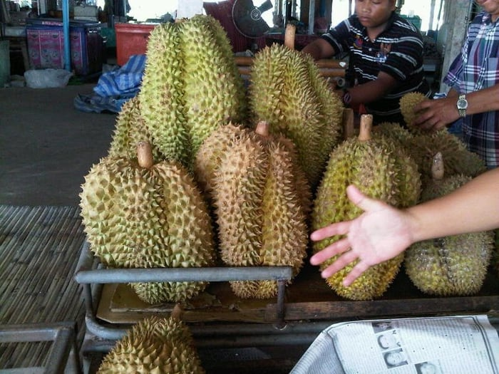 What made durian fruit so expensive? - Quora