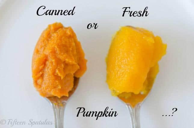 Fresh vs. Canned Pumpkin: I put them to the test! - Fifteen Spatulas