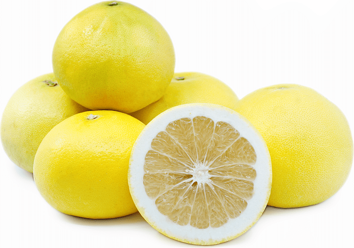 MeloGold Grapefruit Information and Facts
